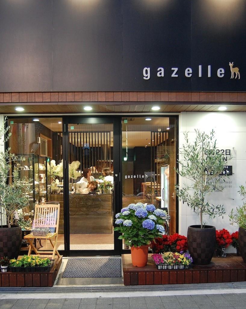 gazelle01