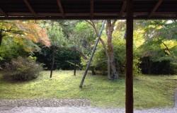 秋のお茶会
