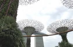 シンガポール建築−3